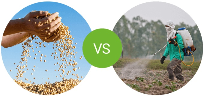 foodspring Protein Muesli compared with a competitor product